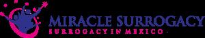 MIRACLE SURROGACY Logo